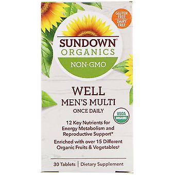 Sundown Organics, Well Men's Multivitamin, Once Daily, 30 Tablets