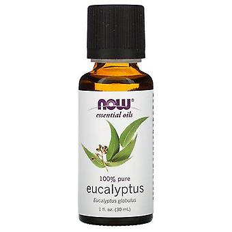 Maintenant Aliments, Huiles essentielles, Eucalyptus, 1 fl oz (30 ml)