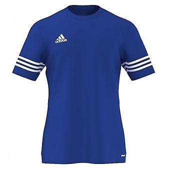 Adidas entrada 14 F50491 univerzálny celoročný Pánske tričko