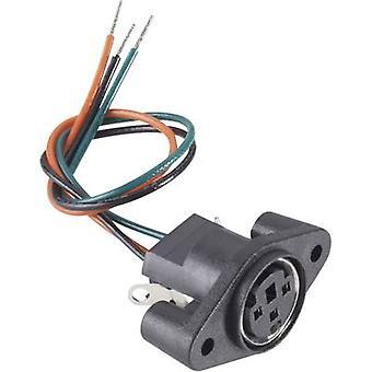 BKL Electronic 0204027 Mini DIN Stecker-Buchse, senkrechte vertikale Anzahl der Pins: 6 schwarz 1 PC