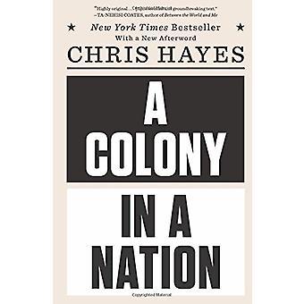 En koloni i en Nation af Chris Hayes - 9780393355420 bog