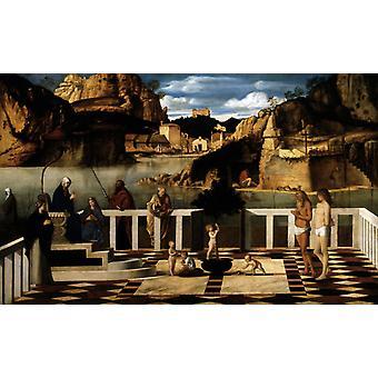 الرمزية المقدسة,جيوفاني بيليني, 60x37cm