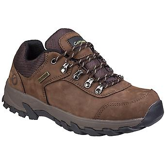 Cotswold Mens Hawling Lace Up Shoe Brown