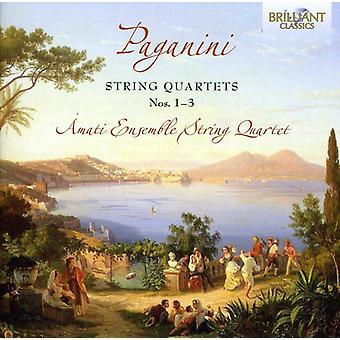 N. Paganini - Paganini: stråkkvartetter nr 1-3 [CD] USA import