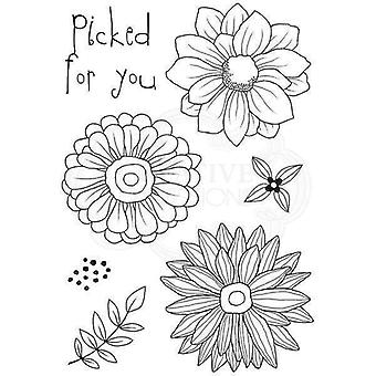 Woodware Clear Stamp Set - Picked for You