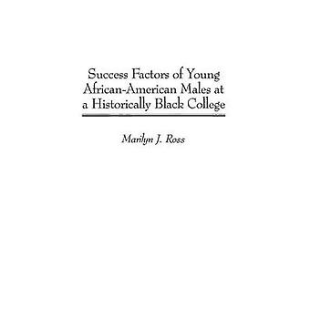 Success Factors of Young African-American Males at a Historically Bla
