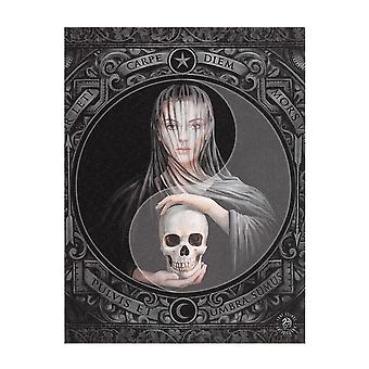 Anne Stokes Beyond The Veil Canvas Plaque