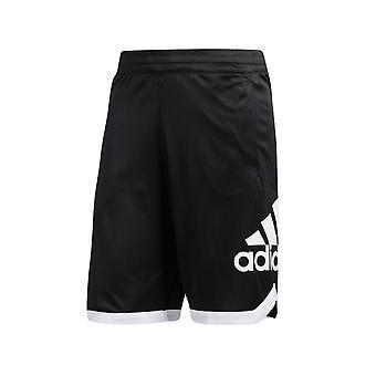 Adidas Essential Crew DP4768 universal todo el año pantalones para hombres
