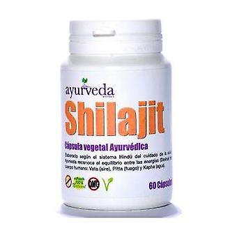 Shilajit None