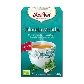 Chlorella Mint 17 infusion bags