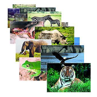 Wild Animals Poster Set, Set Of 10