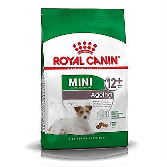 Dog food royal canin mini dog food
