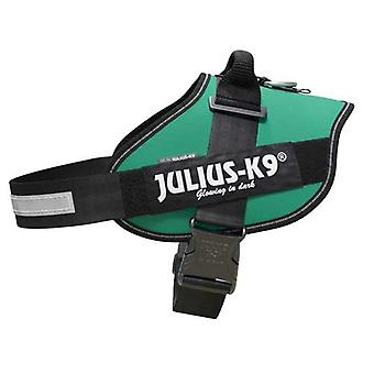 Julius-K9 IDC-Powerharness For Dogs Size: 3, Green