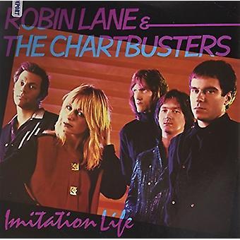 Robin Lane & Chartbusters - Imitation Life [Vinyl] USA import