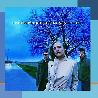 Hooverphonic - fantastiske treet [DVD] USA importere