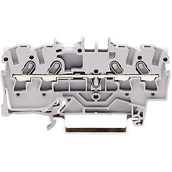 WAGO 2000-1401 Continuity 3.50 mm Pull spring Configuration: L Grey 1 pc(s)