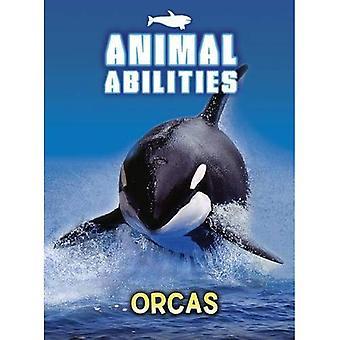 Orcas (animale abilità)
