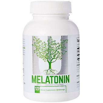 Suplemento Dietético de Melatonina Universal nutrição - 60 cápsulas