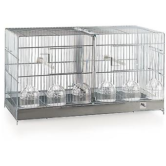 RSL Bird Breeding Cage 1402 (Birds , Cages and aviaries , Cages)