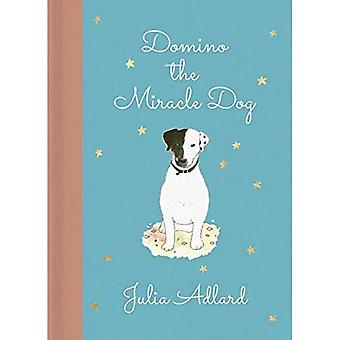 Domino the Miracle Dog: The true story of a little dog called Domino