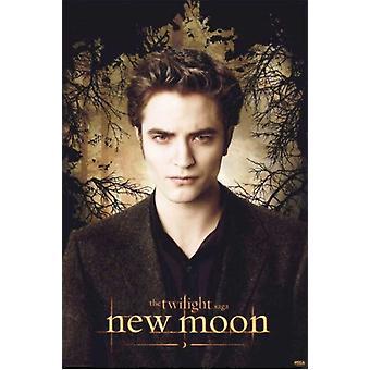 Twilight 2 New Moon (Edward Promo) Movie Poster (11 x 17)