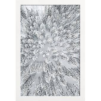 JUNIQE Print - Snowy Forests - Bois poster en gris & blanc