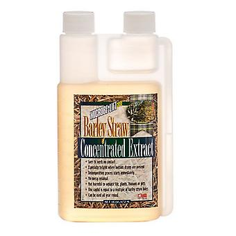 Microbe-Lift Barley Straw Concentrated Extract - 16 oz