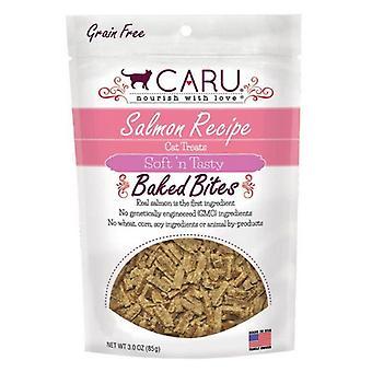 Caru Pet Food Soft 'n Tasty Baked Bites Salmon Recipe Grain-Free Cat Treats - 3 oz