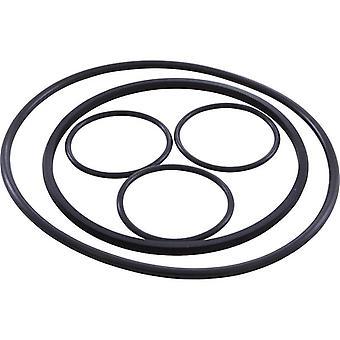 Hayward VLX4004A o-Ring Kit für VL Serie Filter