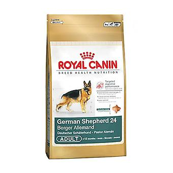 Royal Canin German Shepherd Adult Dry Dog Food, 3kg