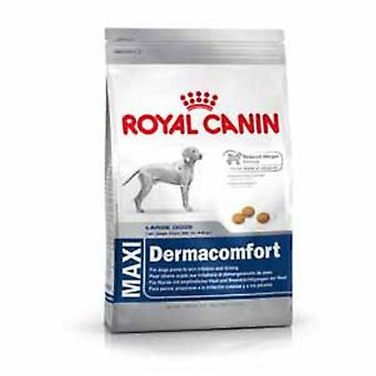 Royal Canin Maxi Dermacomfort Dog Food 12kg