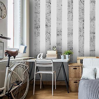 Papier peint - Style gris