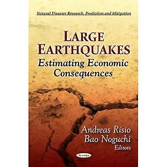 Grandes terremotos