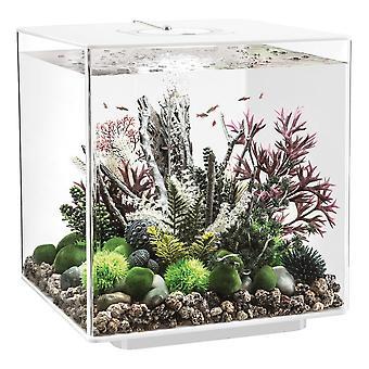 BiOrb CUBE 60 Aquarium MCR LED - White