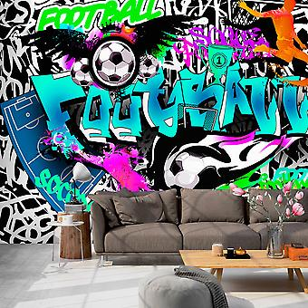 Fotomural - Sports Graffiti