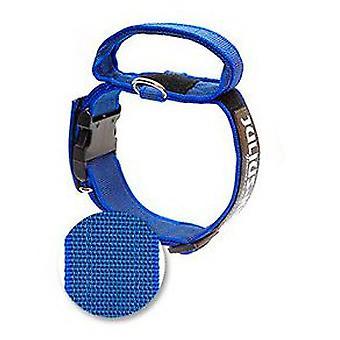 Julius K9 Collar Color & Gray IDC con Asa azul 40 mm