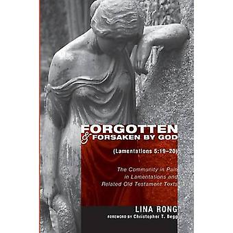 Forgotten and Forsaken by God Lam 51920 The Community in Pain in Lamentations and Related Old Testament Texts by Rong & Lina