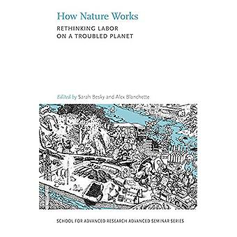 How Nature Works - Rethinking Labor on a Troubled Planet by Sarah Besk
