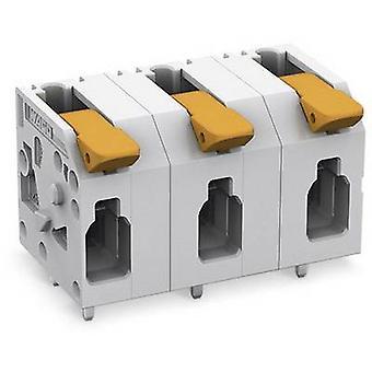 WAGO 2604-1503 Zacisk drukująca 4 mm² Liczba pinów 3 1 szt.