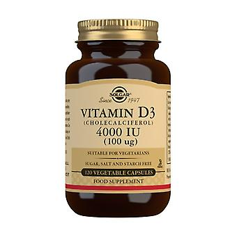 Vitamin D3 120 vegetable capsules of 100mg