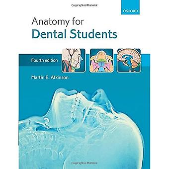 Anatomia hammaslääketieteen opiskelijoille