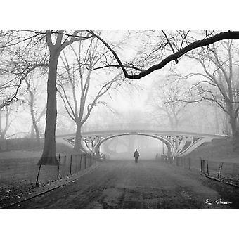Gothic ponte Central Park NYC Poster Print por Henri Silberman (32 x 24)