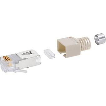 بيل ستيوارت موصلات CE6323 CE6323 RJ45 توصيل موصل القط 5e SS37 8P8C RJ45 التوصيل، مستقيم رمادي