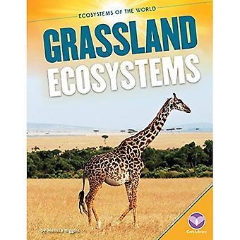 Gräsmark ekosystem (ekosystemen i världen)