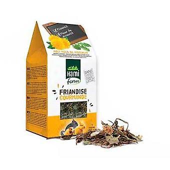 Hami Form Friandises Gourmande Dandelion Snack (Small pets , Treats)