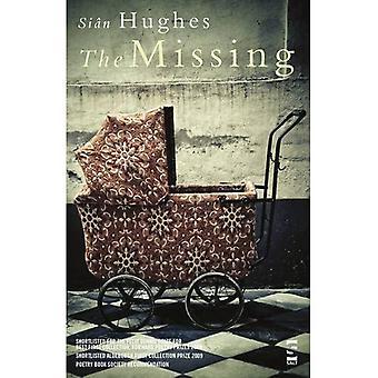 The Missing (Salt Modern Poets S.)