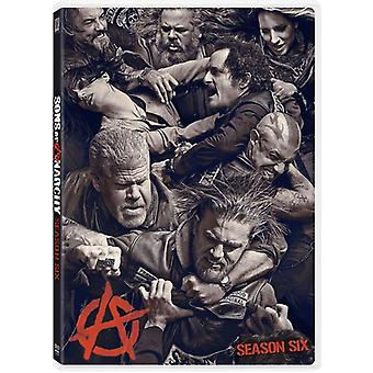 Sons of Anarchy: Season 6 [DVD] USA import