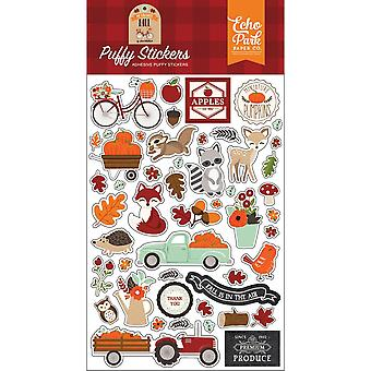 Echo Park My Favorite Fall Puffy Stickers