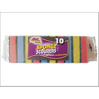 Squeaky Clean Sponge Scourer Assorted x 10 800.10SQ2