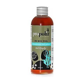 Shampoo all coat honey, propolis 200 ml